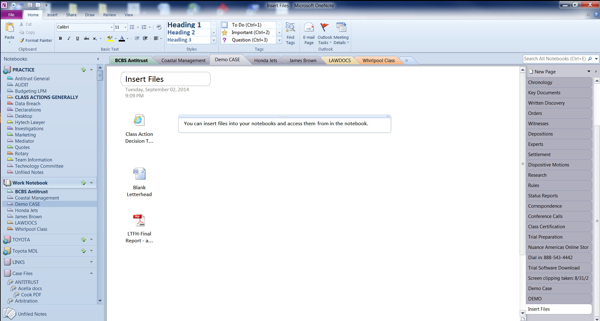 OneNote Screen Shot 2